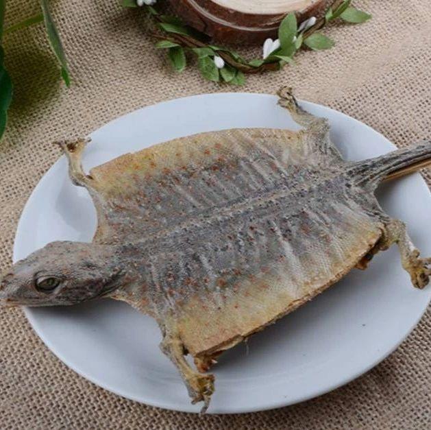 【视频】您知道蛤蚧为什么叫蛤蚧吗?4分钟全面了解!