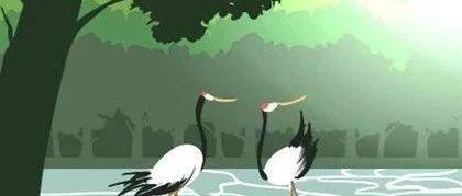 八字命理学四柱预测家里养鸟好吗对风水有影响吗