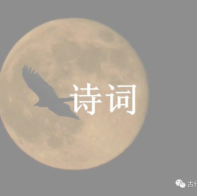 诗词诗经中的月亮