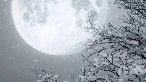 成语与月相关的成语